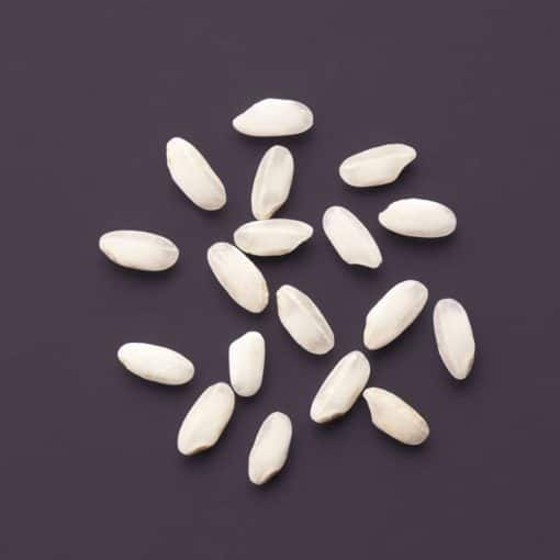 Bio Risotto-Reis von Reishunger